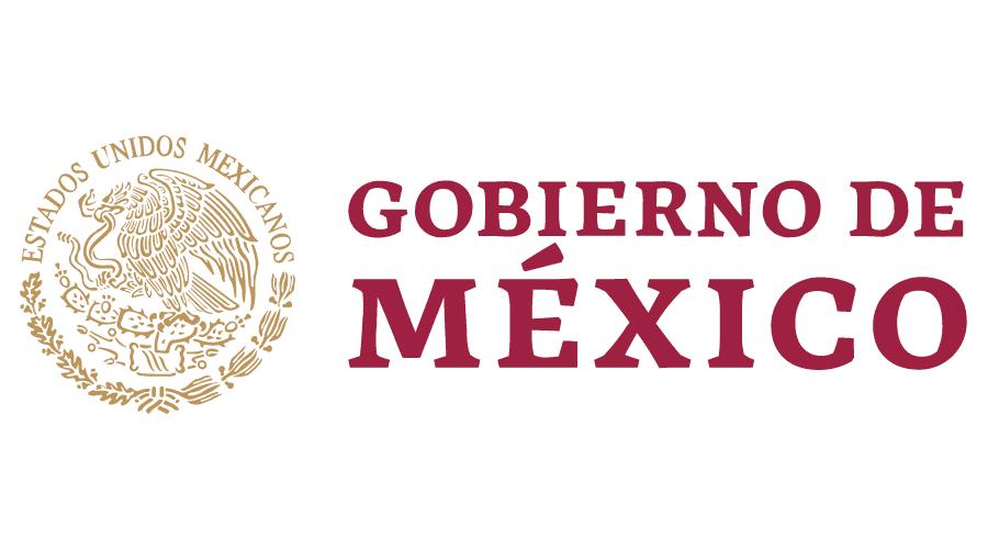 GSE Gob de Mx Logo